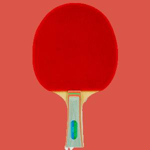 Melhor Raque de Tênis de Mesa Profissional