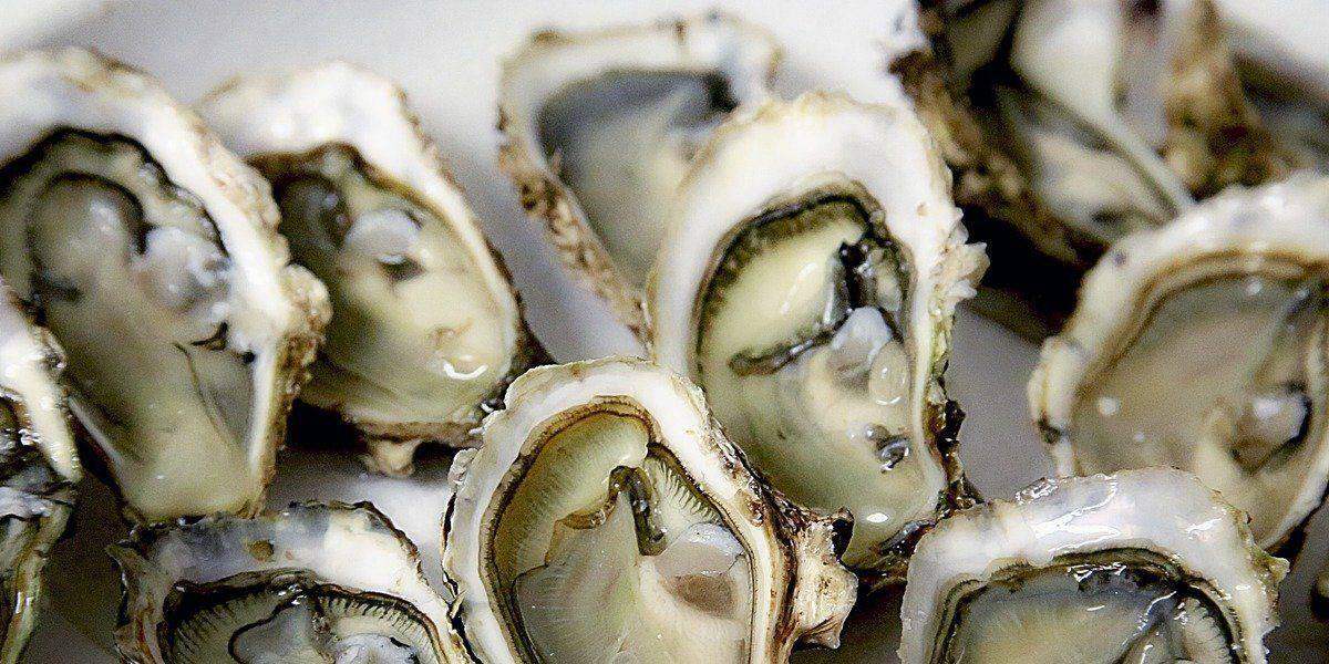 Um dos alimentos mais ricos em zinco é a ostra.